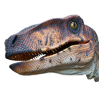 VelociraptorFace2.png